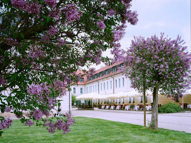 Exterior view of Pillnitz Palace Hotel with lilac blossom in the foreground