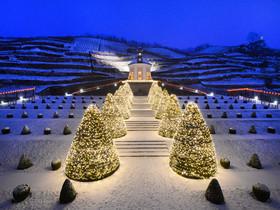 Winterlicher Blick auf Belvedere Schloss Wackerbarth Schloesserland Sachsen